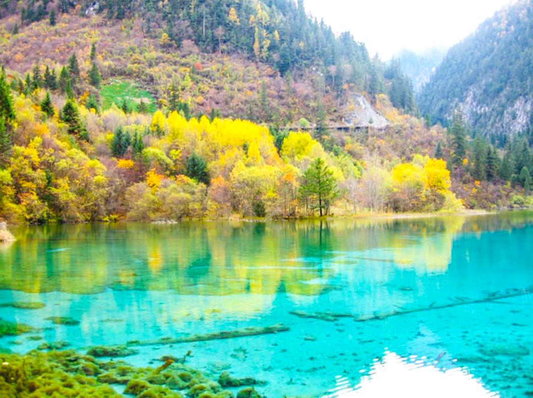 透明度120%の湖 中国の世界遺産・九寨溝(きゅうさいこう)