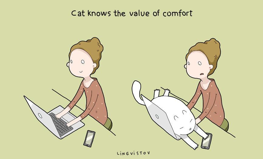 ネコを飼って本当によかったと思う「19のこと」