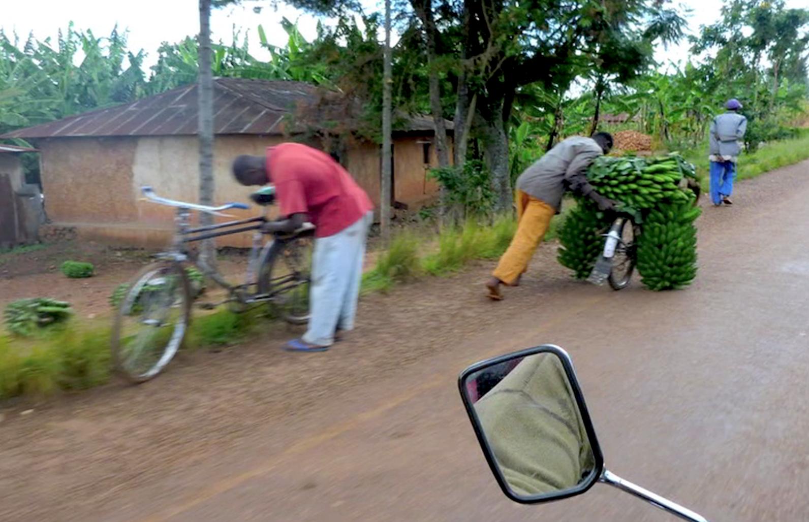 軽くて強い 竹を使った「バンブーバイク」が世界の貧困国で走る日