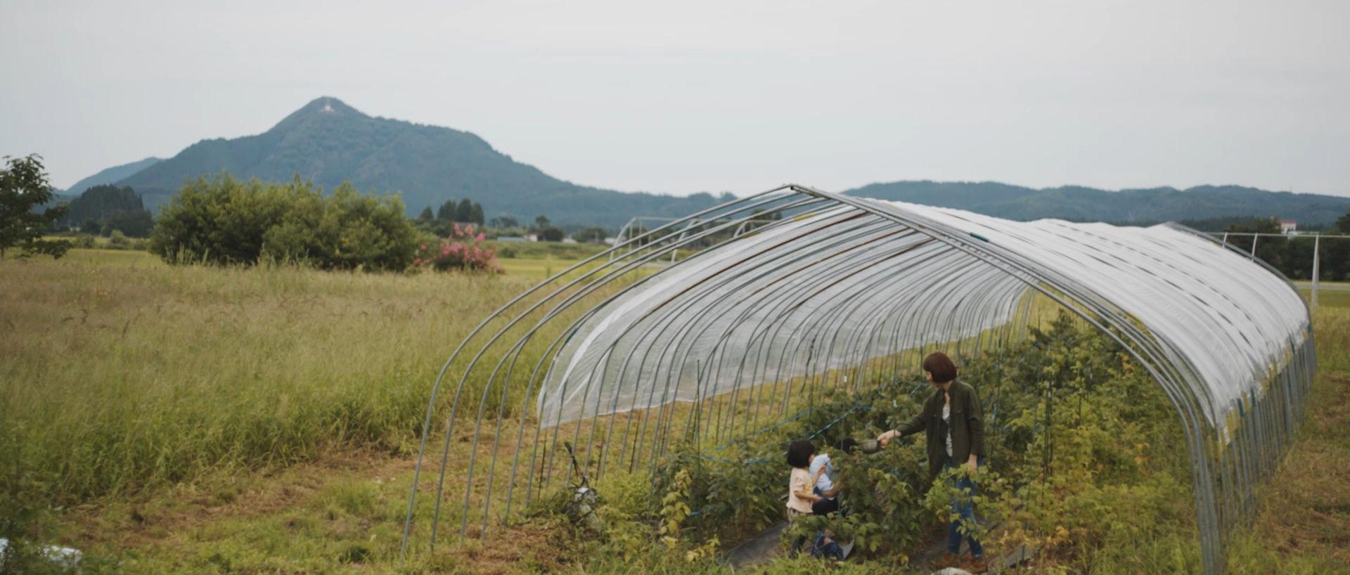 演出一切ナシ!秋田県の「ありのままの姿」を集めた映像が美しい・・・