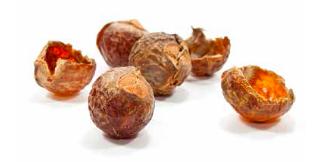 泡立つフルーツの殻で洗濯!ネパール発の天然洗剤「Seepje」