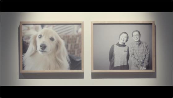 飼い主へ最高のプレゼント。「もしも愛犬があなたの写真を撮ったら?」
