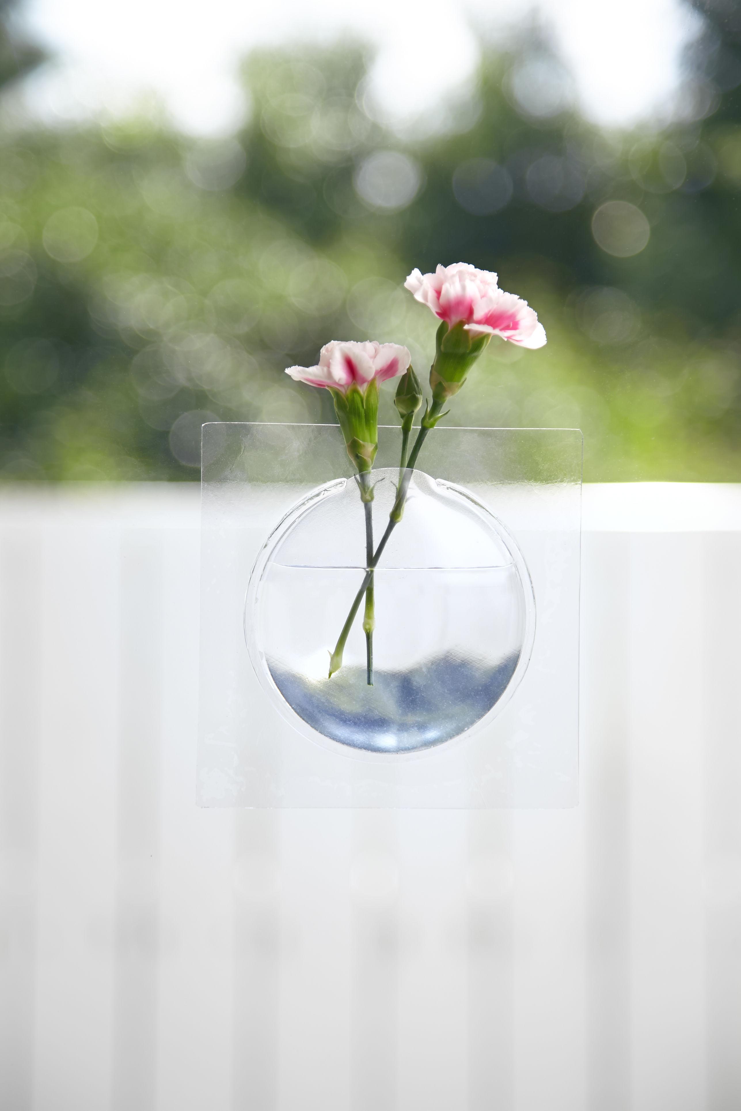 宙に花を生ける!? 窓に貼る花瓶「Kaki」がカワイイ