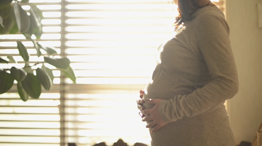 妊娠ママのお腹のふくらみと一緒に成長する、世界にたった一冊だけの本