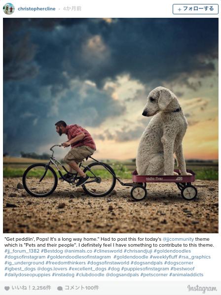愛犬「ジュジ」が大きくなっちゃった!ファンタジーな世界観がInstagramで話題に