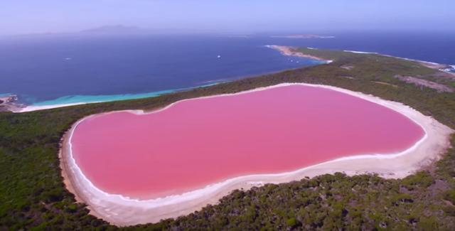 【絶景】オーストラリアにあるピンク色の湖。その上をウイングスーツで飛んでみたら・・・