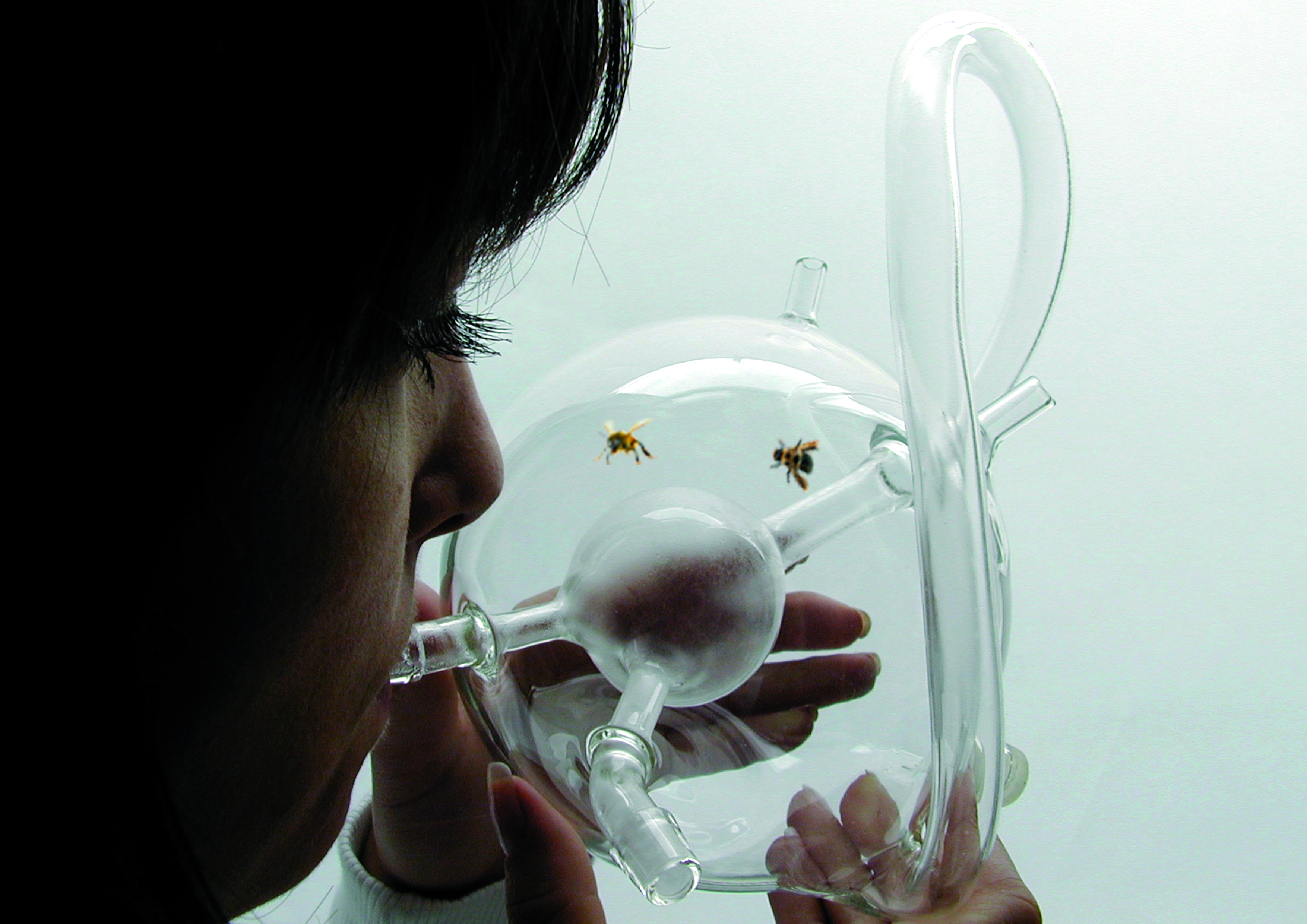 ついに、ガン検診に「昆虫」を使う時代がやってきた