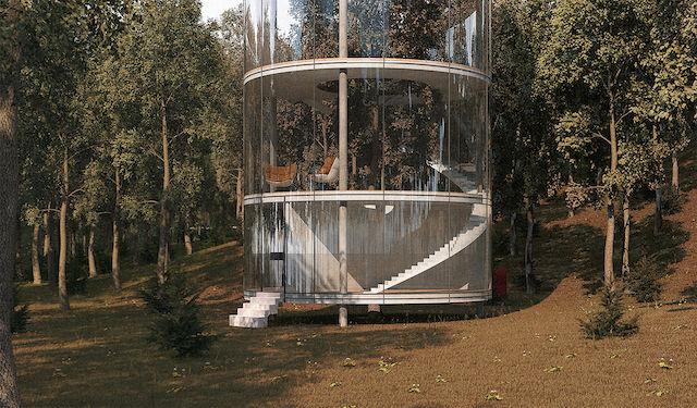全面ガラス張りの「ツリーハウス」は、1本の木と一緒に暮らす家