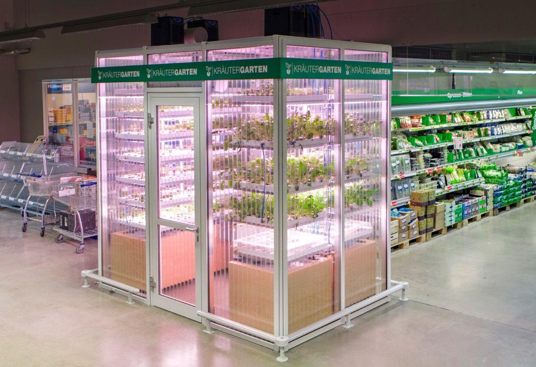 究極に新鮮!野菜やハーブを収穫できるスーパー(ドイツ)