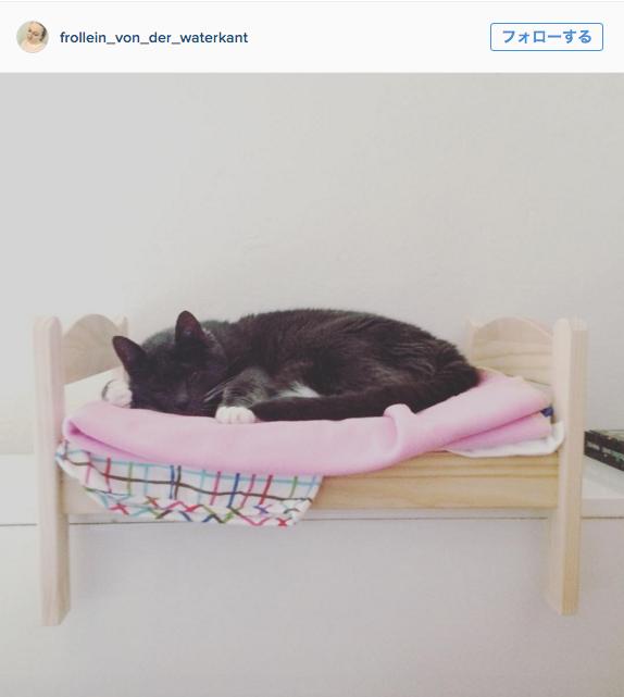 IKEAの「ドール用ベッド」を愛用するネコが急増中