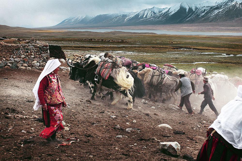 遊牧民のリアル。16ヶ月の密着が生み出した息を飲む写真(17枚)