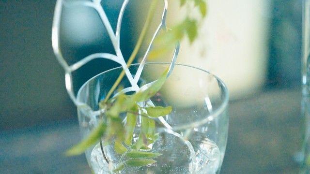 植物のためのジュエリー「PLANT'S JEWEL」が登場。しかも、カワイイだけじゃない!