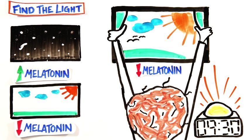 朝スッキリ目覚められる「7つの科学」。コーヒーの代わりに飲むべきは、オレンジジュース!?