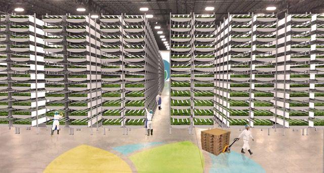 世界最大規模の「屋内ファーム」が誕生。都市部にも新鮮な野菜を!