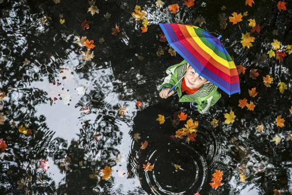 雨に関連する夢