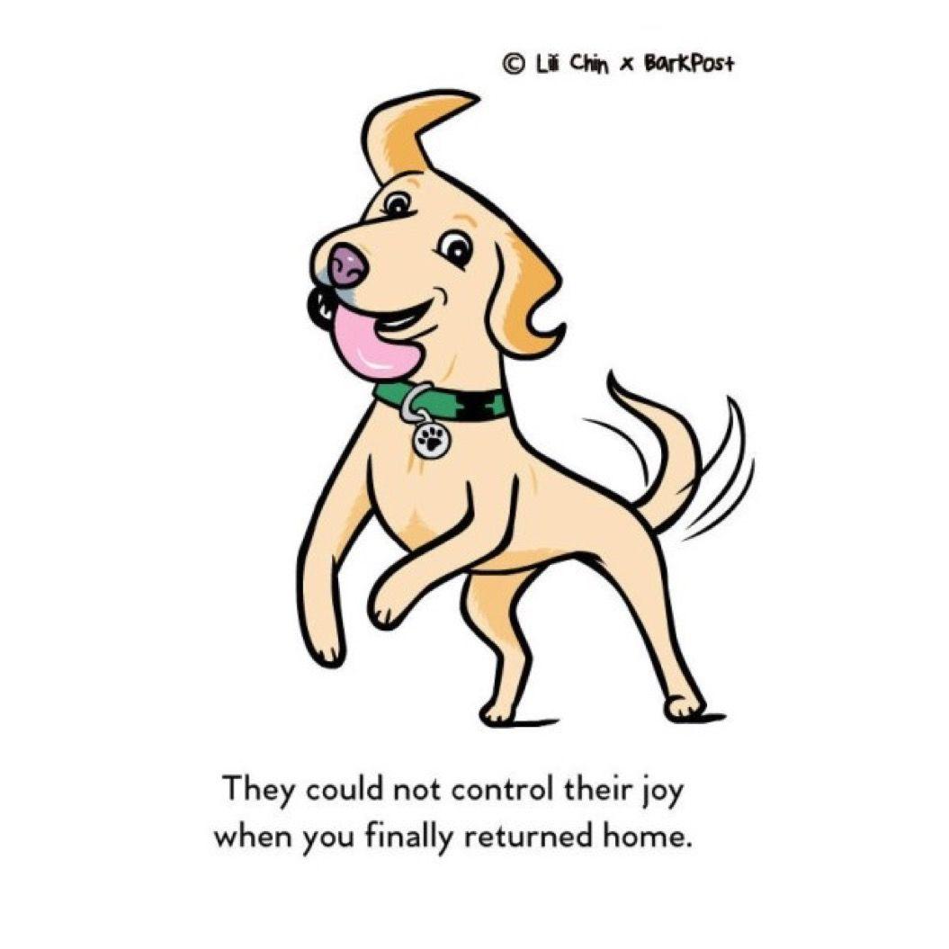 愛犬があなたに「大好き!」と伝えている10の行動。気持ち悪いプレゼントを持ってくる?