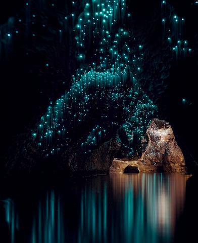 ニュージーランドの地下に広がる「碧い星空」にうっとり