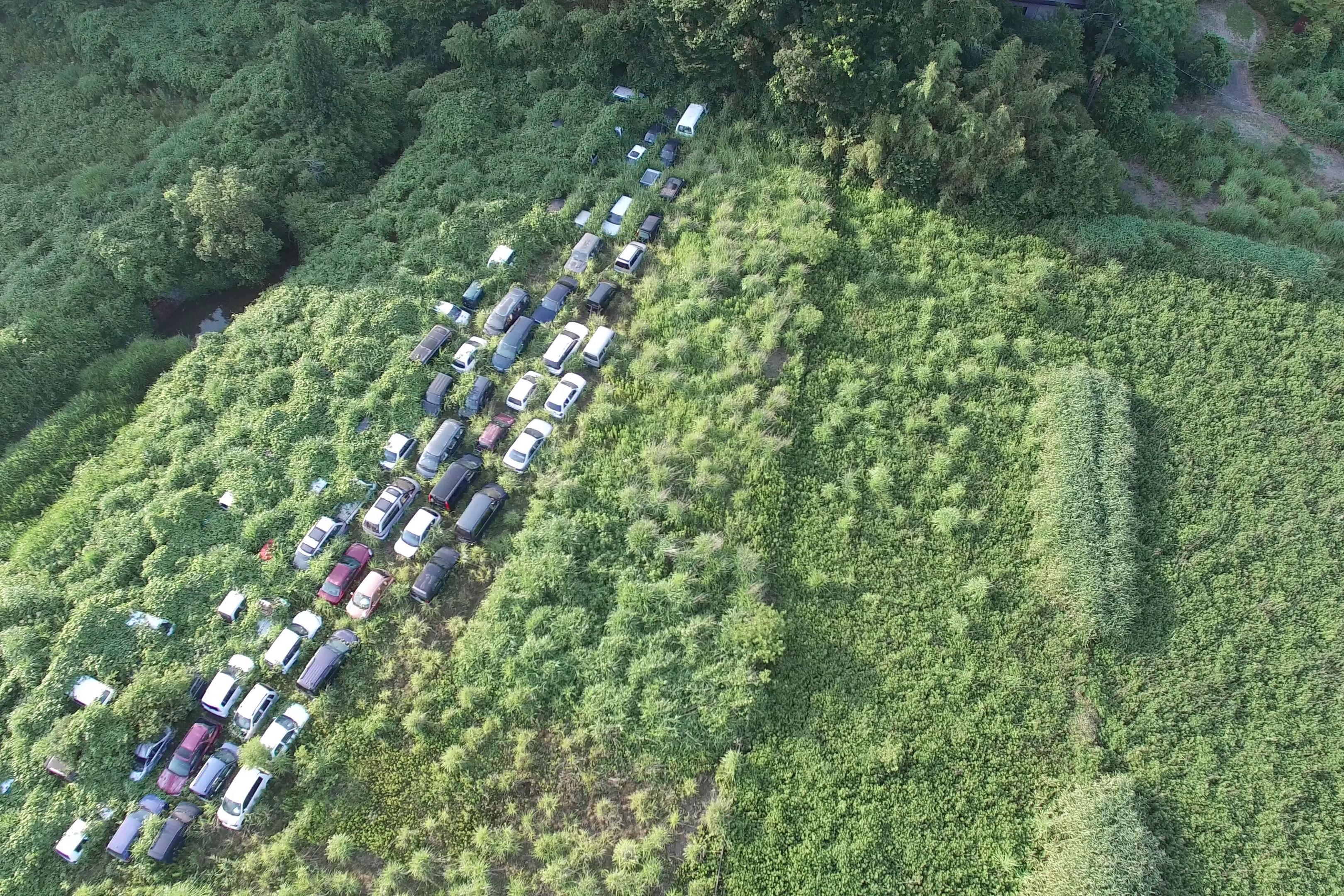 原発事故から4年。外国人カメラマンが見た「福島」