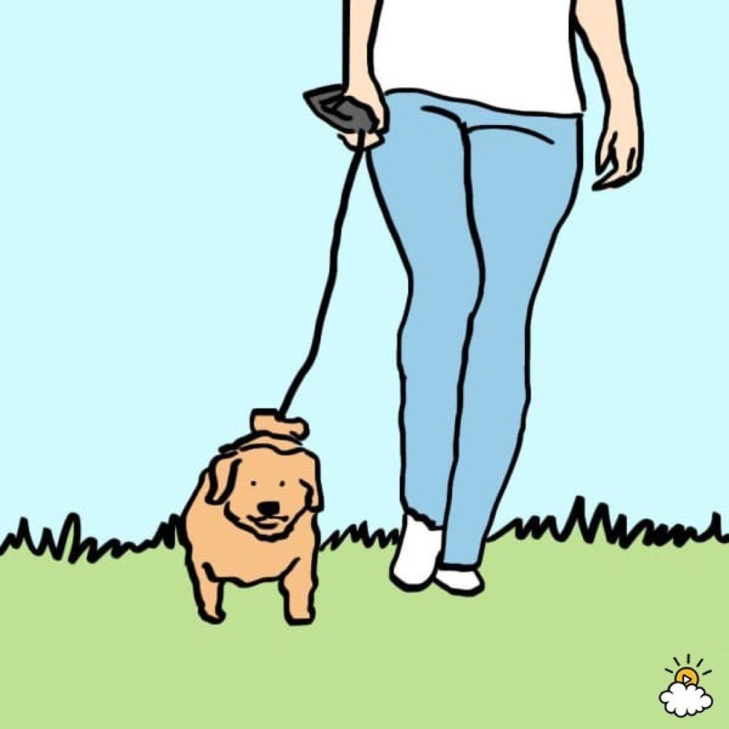 人生に必要なことは「犬」から学んだ!心に沁みる22のポエム