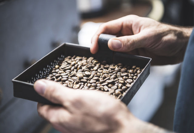 コーヒーは、「豆を◯◯」するとおいしくなる!? (研究結果)