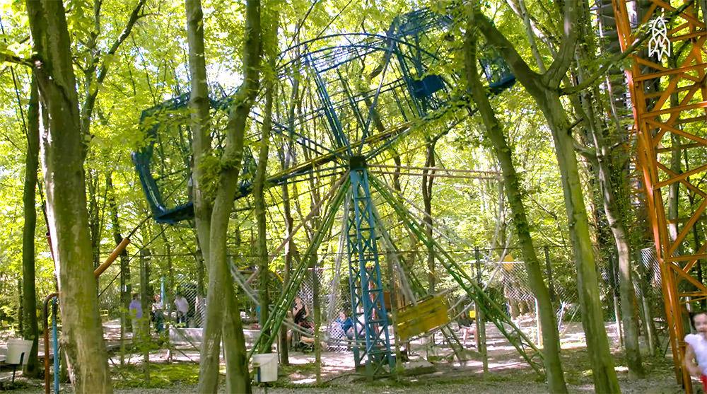 たった一人で「森の遊園地」をつくったおじいちゃんが大切にしている、自然との向き合いかた