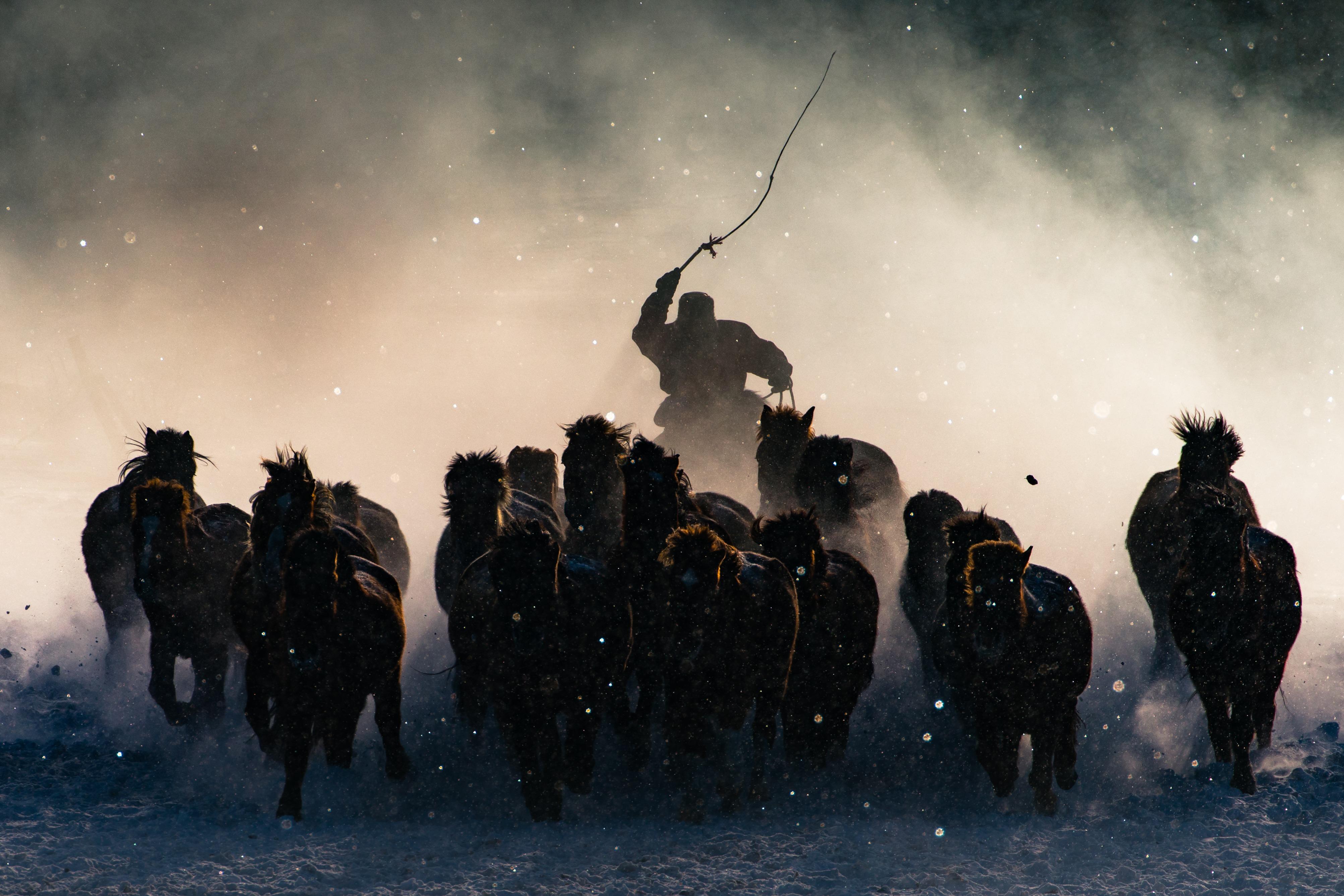 マイナス20度の風。モンゴルの騎手が鞭打つ瞬間。