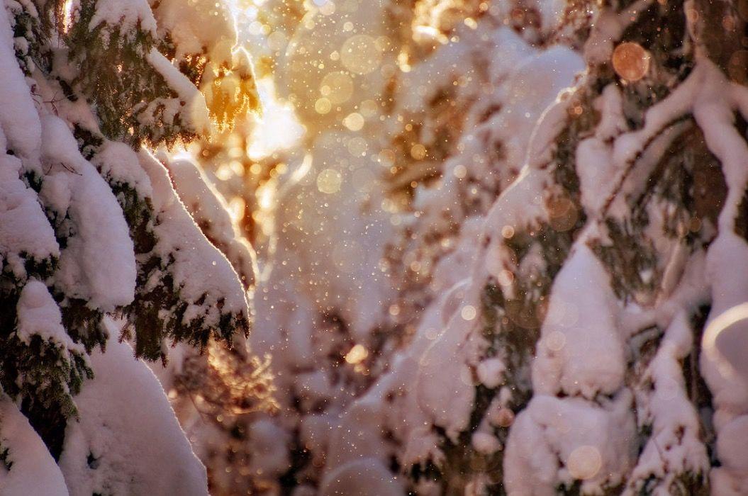 まるで絵画のような美しさ。フィンランド・アイスランドの風景写真8選