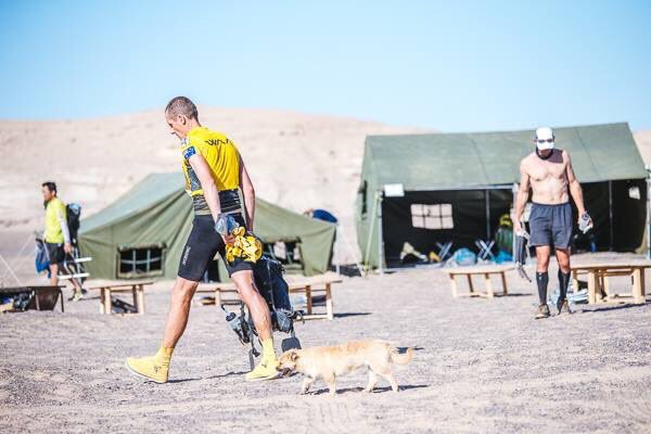 ゴビ砂漠マラソンで出会った「ランナーとのら犬」が感動的ゴール!