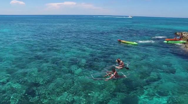 海と一体化できる「シースルーカヤック」は、この夏最高のアクティビティだった