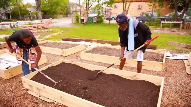 野菜を育てるファームの力で「犯罪」を減らす(米・テキサス)