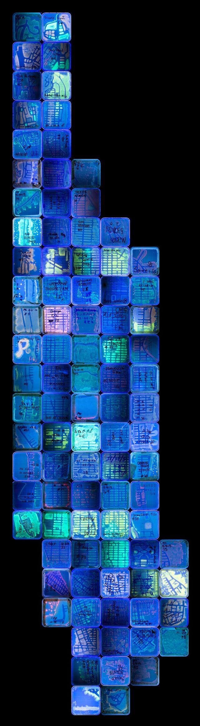 Medium 494e1e672af02414c2ae382a69b7d4dba79e4b28