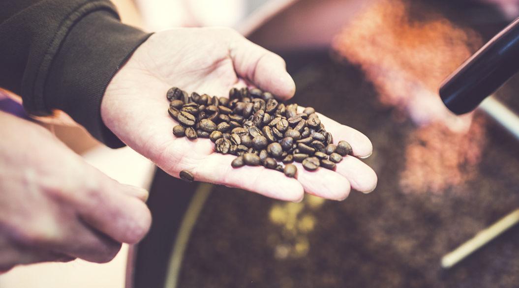 2080年、地球上から「コーヒーが消える日」がやってくる