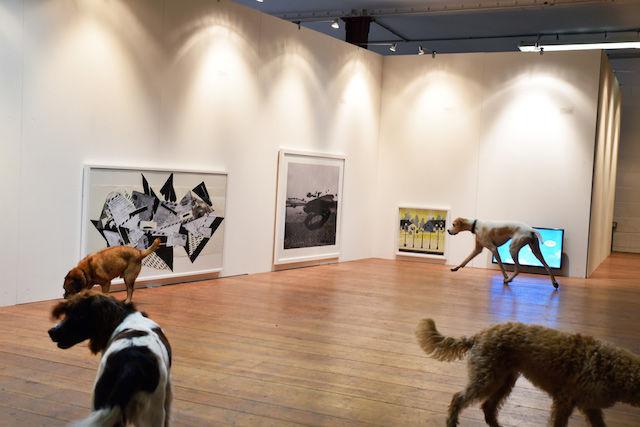 【世界初】ロンドンで開催された「犬のための現代アート展」