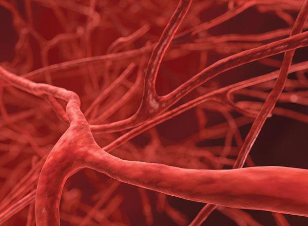 世界初、血管を泳ぎ薬物を運ぶ「ナノフィッシュ」が開発された。
