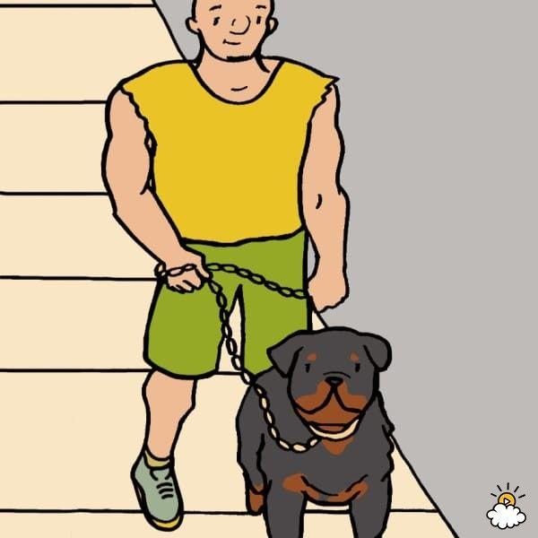 【10種別】愛犬の種類でわかる「あなたの性格」