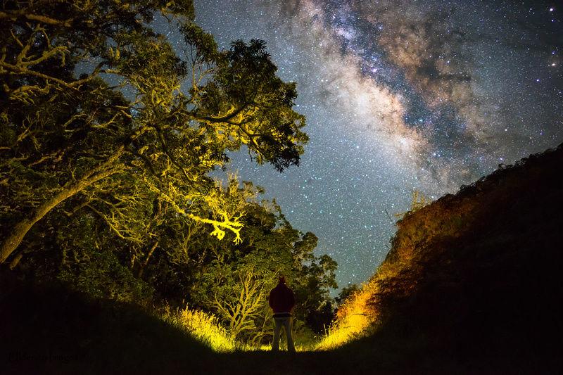 少年がひと夏を捧げて撮影したハワイの「ミルキーウェイ」が美しい