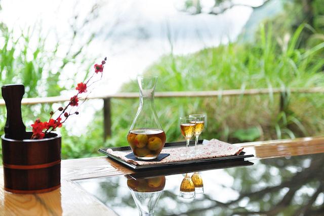 「空中盆栽BAR」や「梅見風呂」。星野リゾートが提案する、梅尽くしの旅