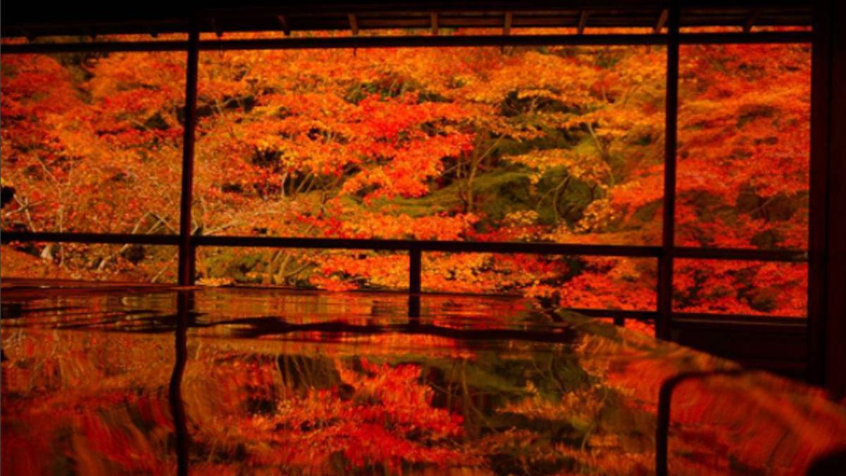 「#床もみじ」の先にひろがる、この時期ならではの京景色