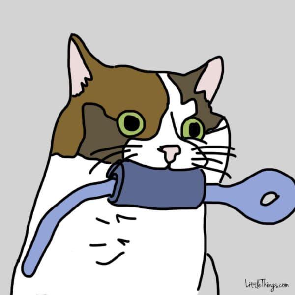 猫が飼い主にみせる「10の愛情表現」(イラスト)