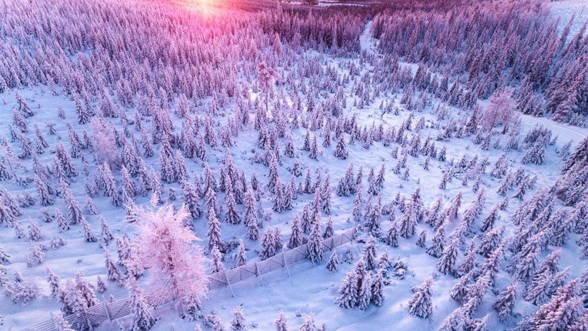 フィンランドの冬景色に、ただただ癒される。