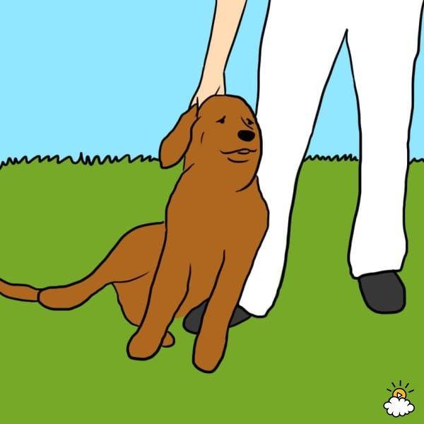 やっぱり犬は最高!愛犬の行動に隠された10の「I LOVE YOU」