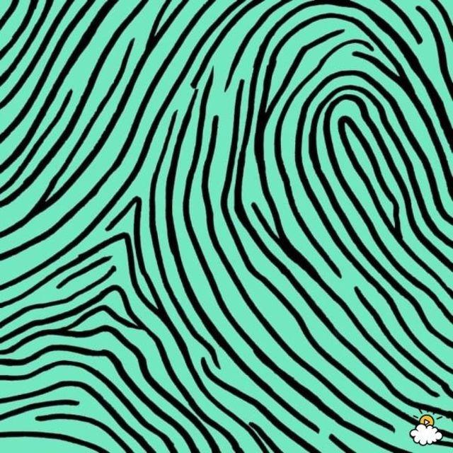 読んだあと、つい自分の指先をまじまじと見つめたくなる「指紋診断」