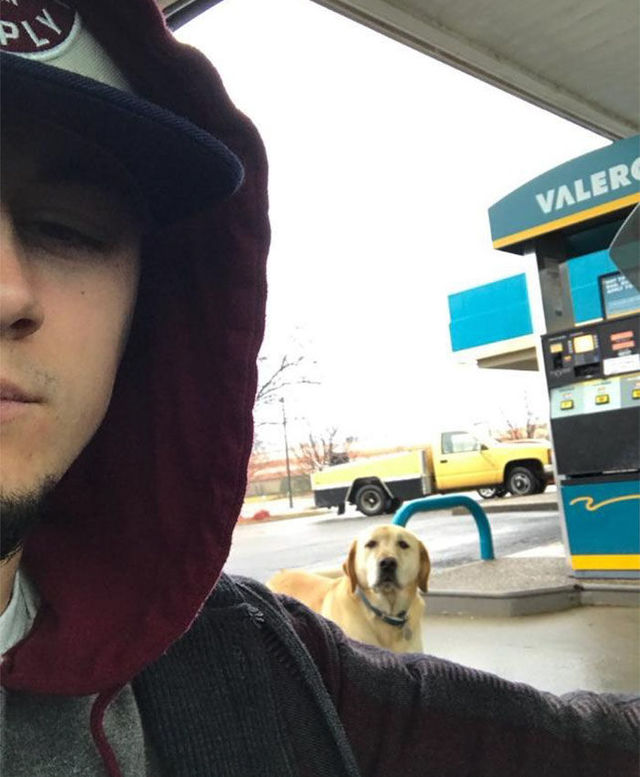 「こう見えて、迷ってるわけではありません」。冒険好きな有名犬