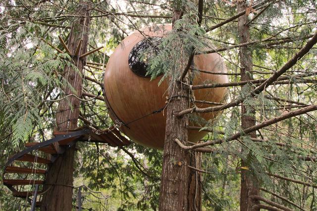 カナダの森の中に佇む「球型ツリーハウス」が気持ちよさそう!