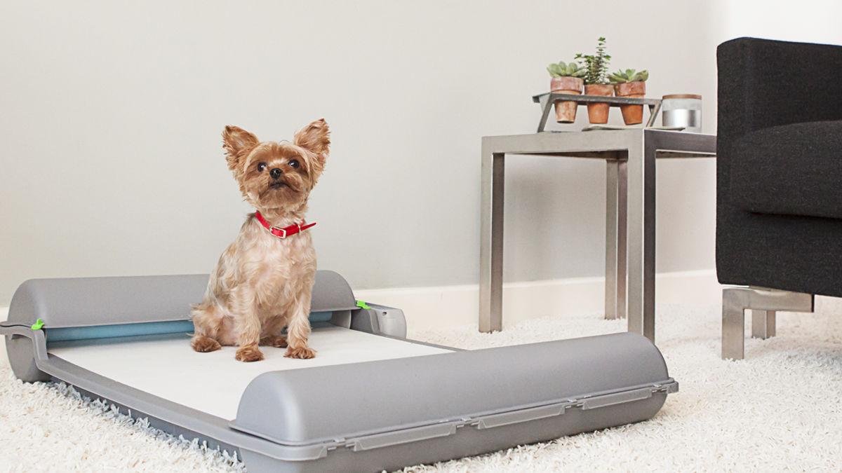 愛犬のトイレを自動で「お片付け」してくれるパッド