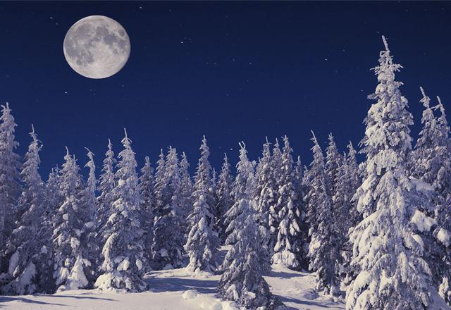 38年ぶり!今年のクリスマスは「満月」がやってくる