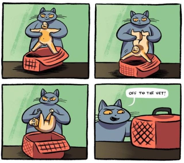 もしも、猫とおじさんが入れ替わったら…。